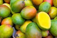 Plastic using Mango leaf extract offers food preservation and UV filtering